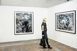 PREVIEW BERLIN ART FAIR 2013
